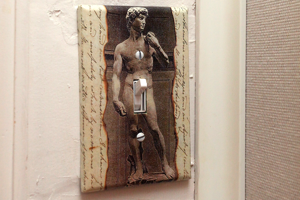 A Michaelangelo's David light switch with the lever as the penis.