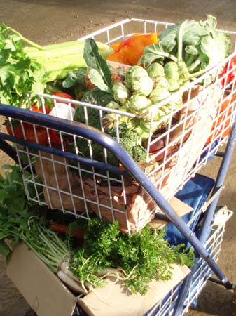 A shopping trolley full of fresh produce at the farmer's market