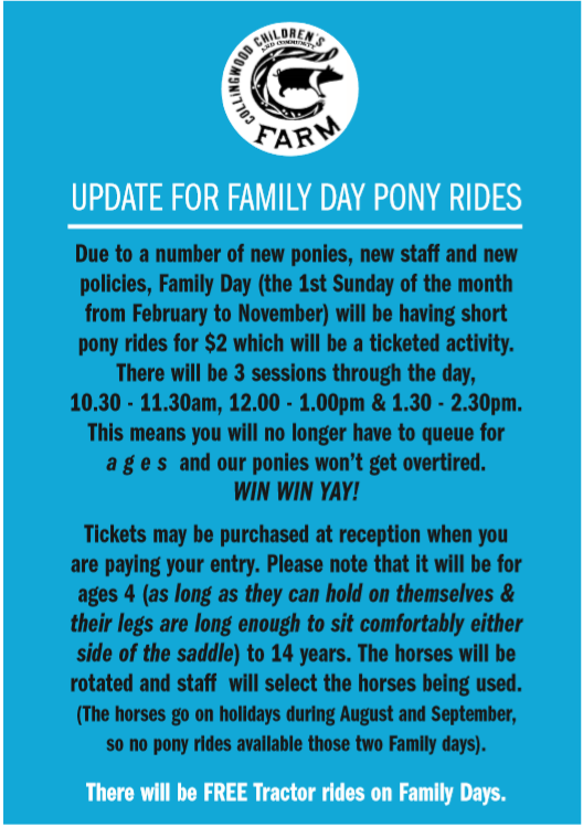 Pony Rides 25.02.19.PNG
