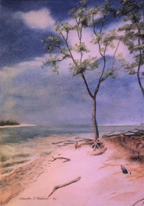 Calidesi Island.jpg