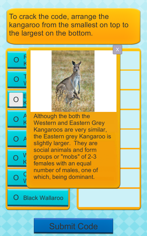Kangaroo Puzzle Additional Info.png
