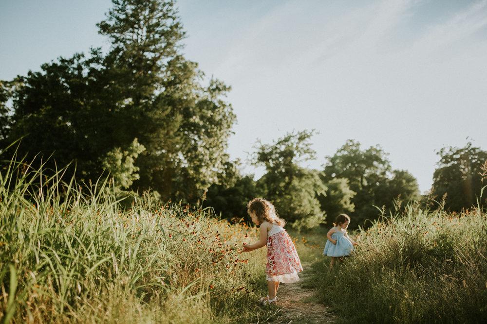 WILDFLOWERSAND WILD SISTERS -