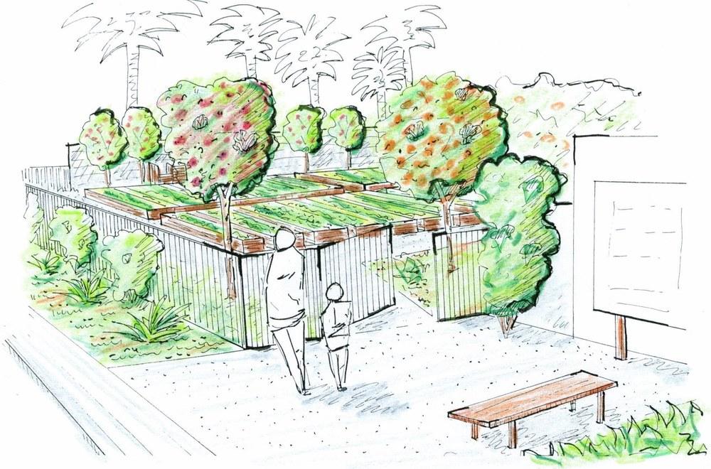 Community Drawing Drawing Community Garden.jpg