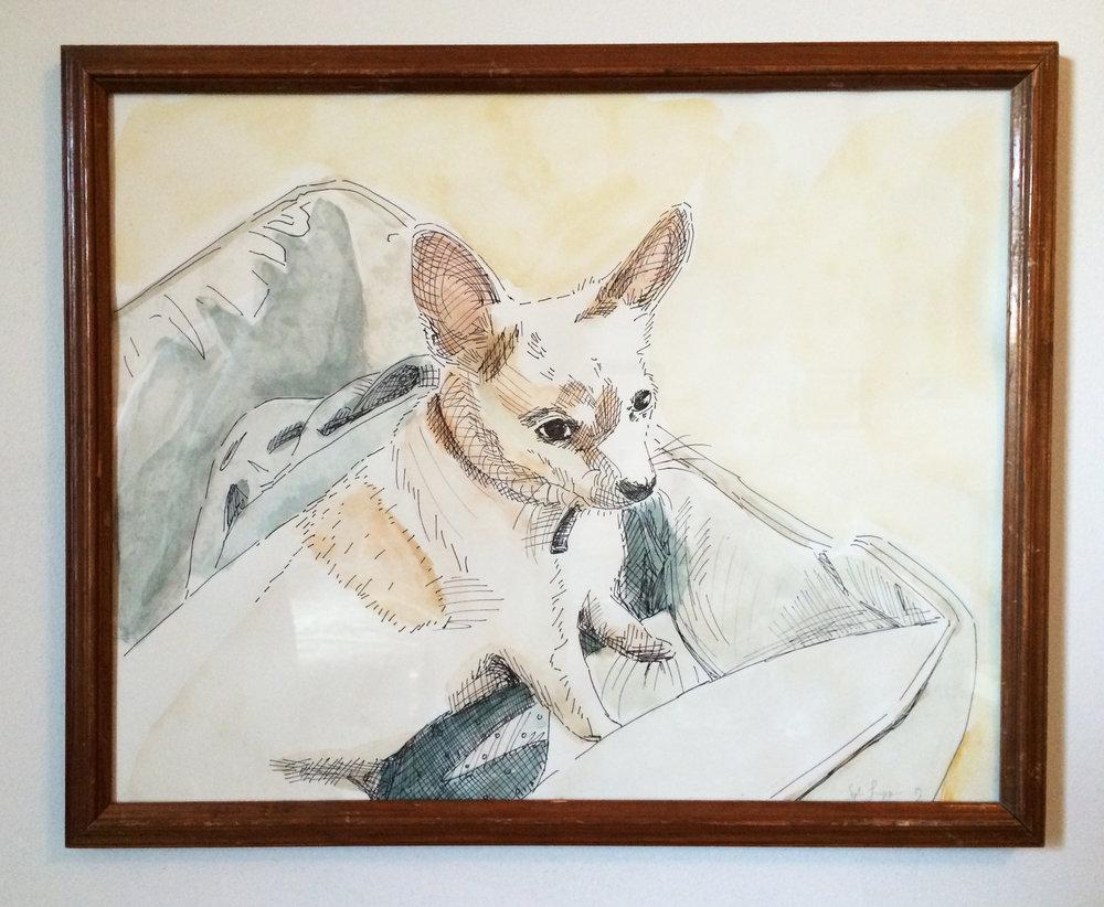 Dog Portraits.jpg