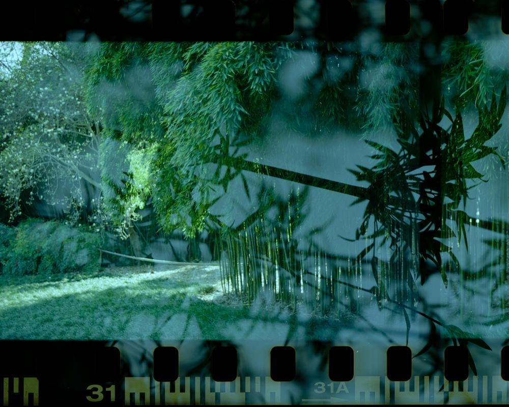 cmh_doubleexposure-005.jpg