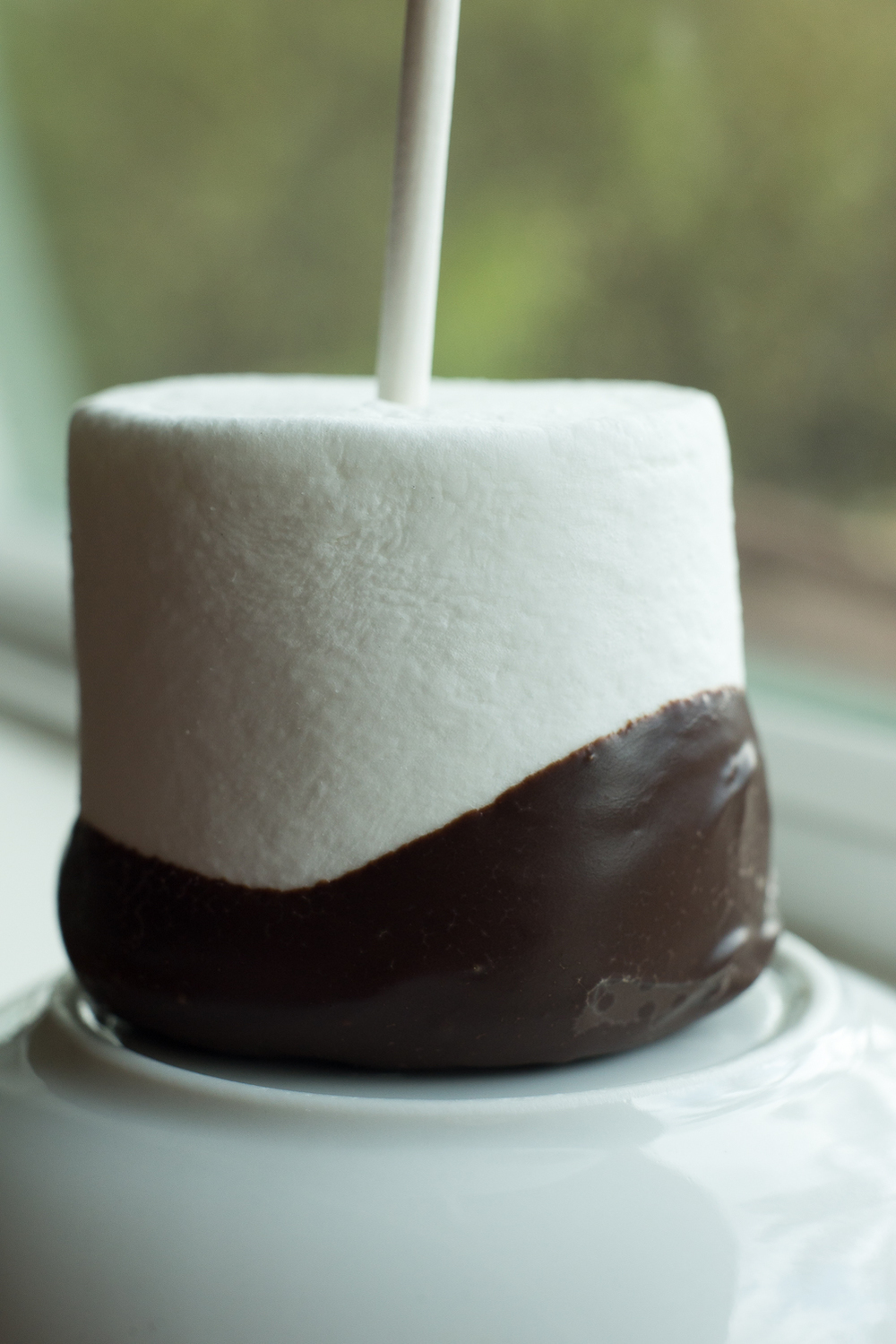 chocolate-dipped-marshmallow.jpg