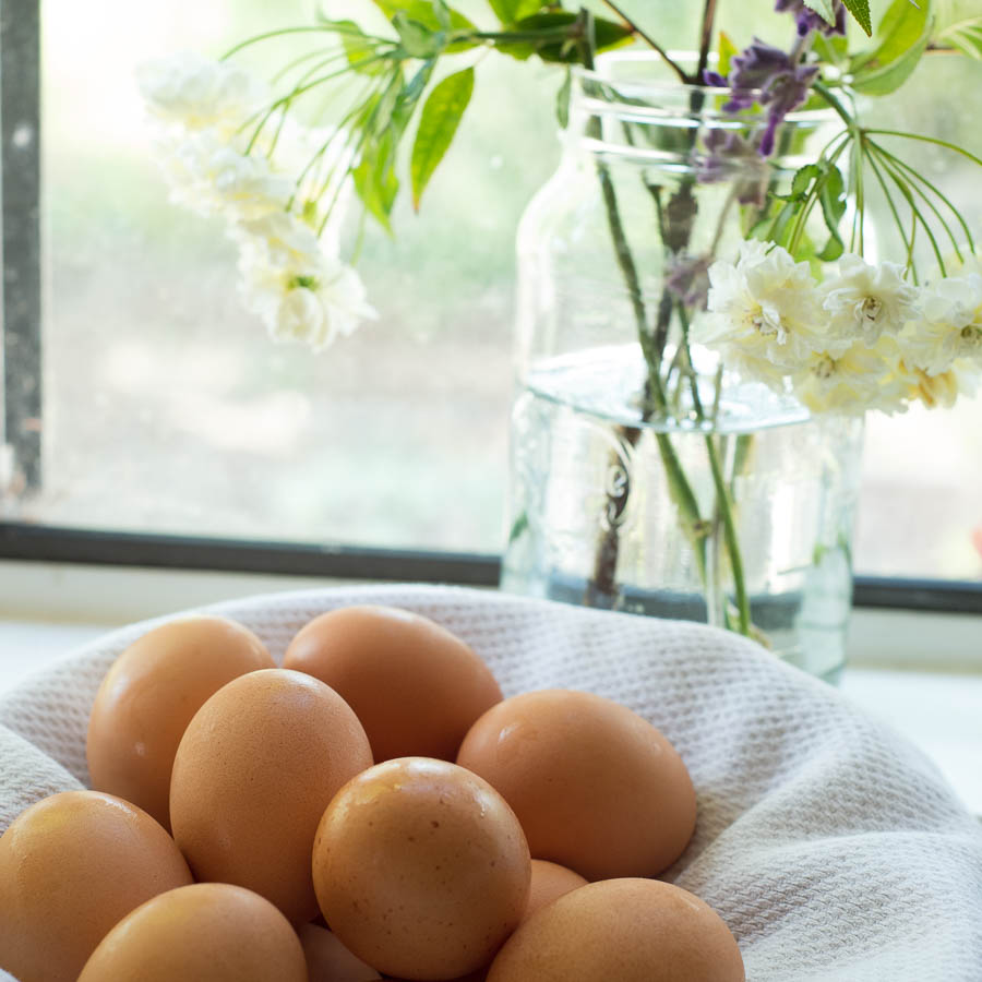 brown-eggs.jpg