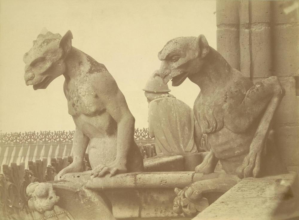 Gargoyles - Notre Dame de Paris