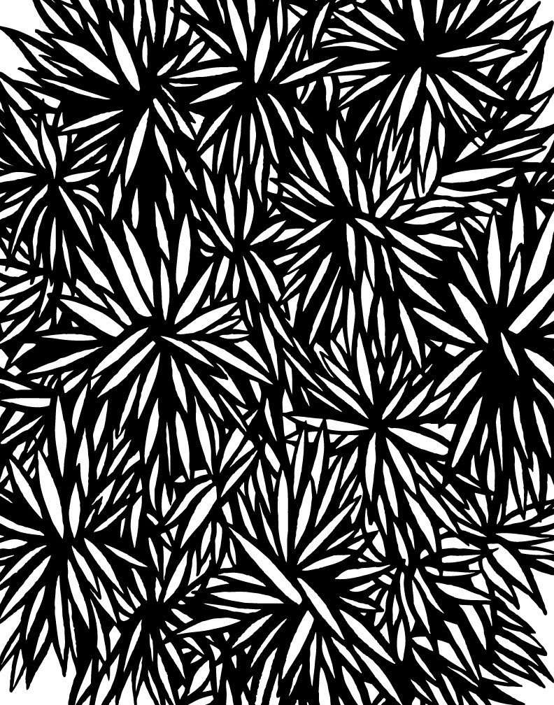 spikey-mrtaylor-texture.jpg