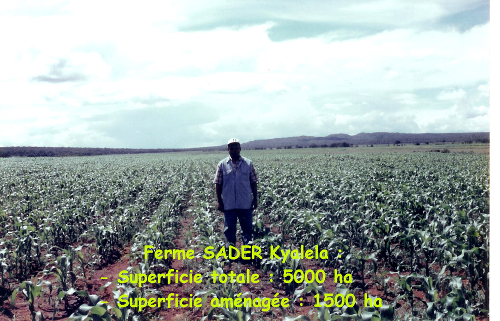 SADER Farm - 5000 ha (Kyalela, Katanga, DRC)