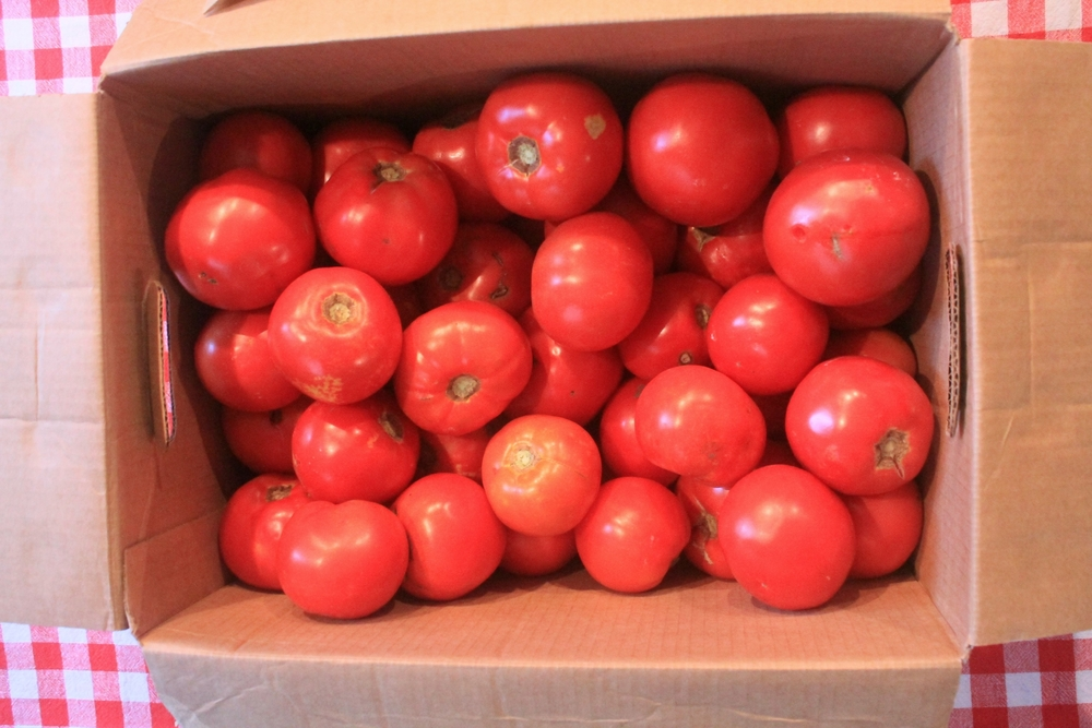 $10 worth of stewing tomatoes