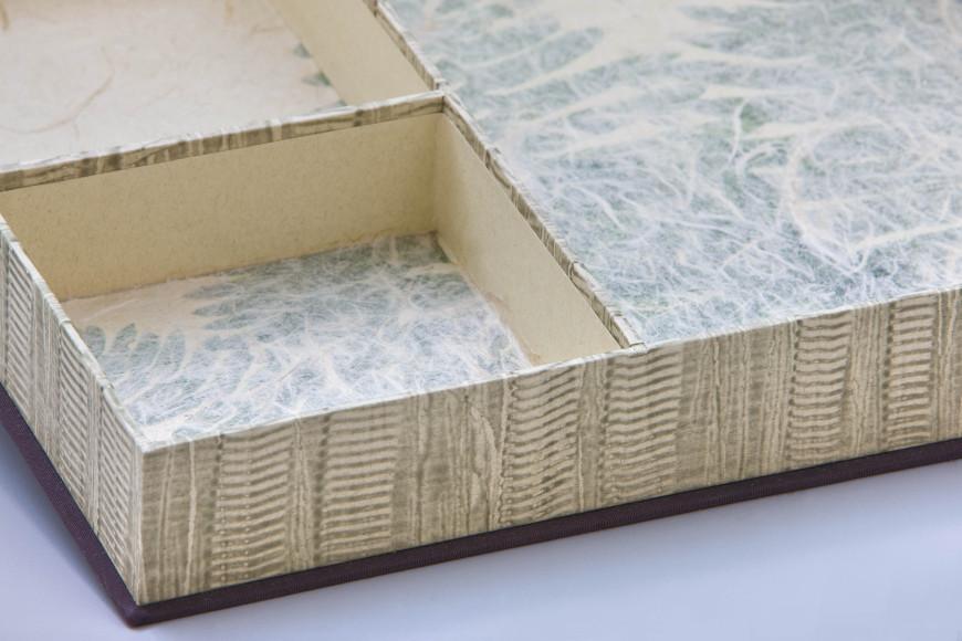 Penland Ferns box