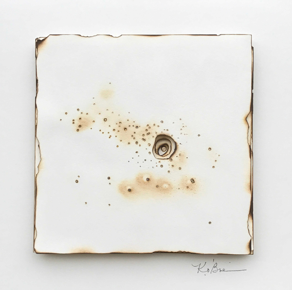Kelly M. O'Brien, Playing With Fire No. 61 (Andrena Rosae). Paper, gold leaf, flame. 14 x 14 x 1 inches (framed). ©2017.