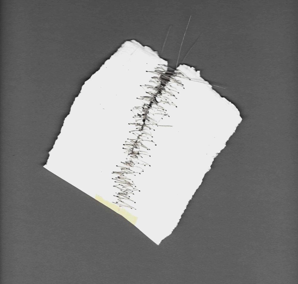 Kelly M. O'Brien,  Mending |Tending . Paper,thread. Dimensions variable. ©2017.