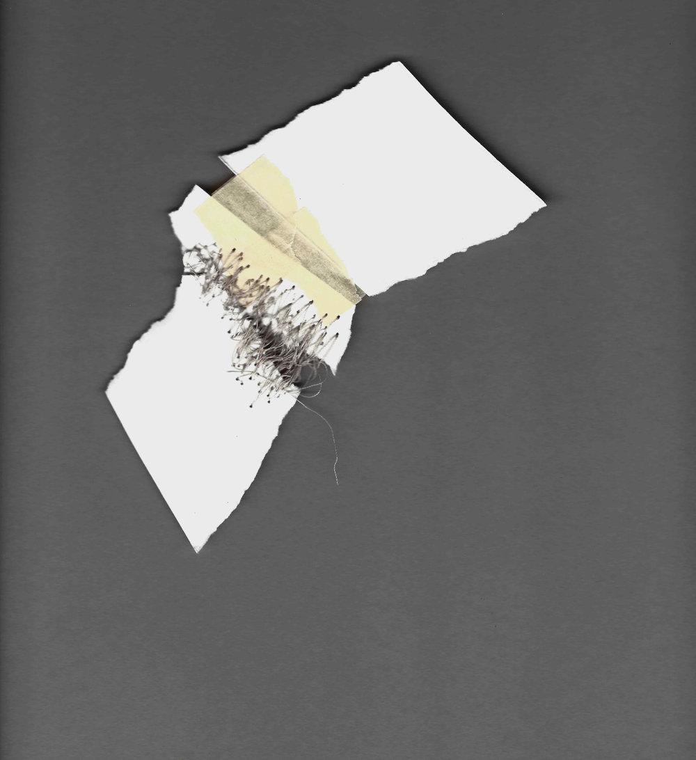 Kelly M. O'Brien,  Mending |Tending . Paper, tape, thread. Dimensions variable. ©2017.