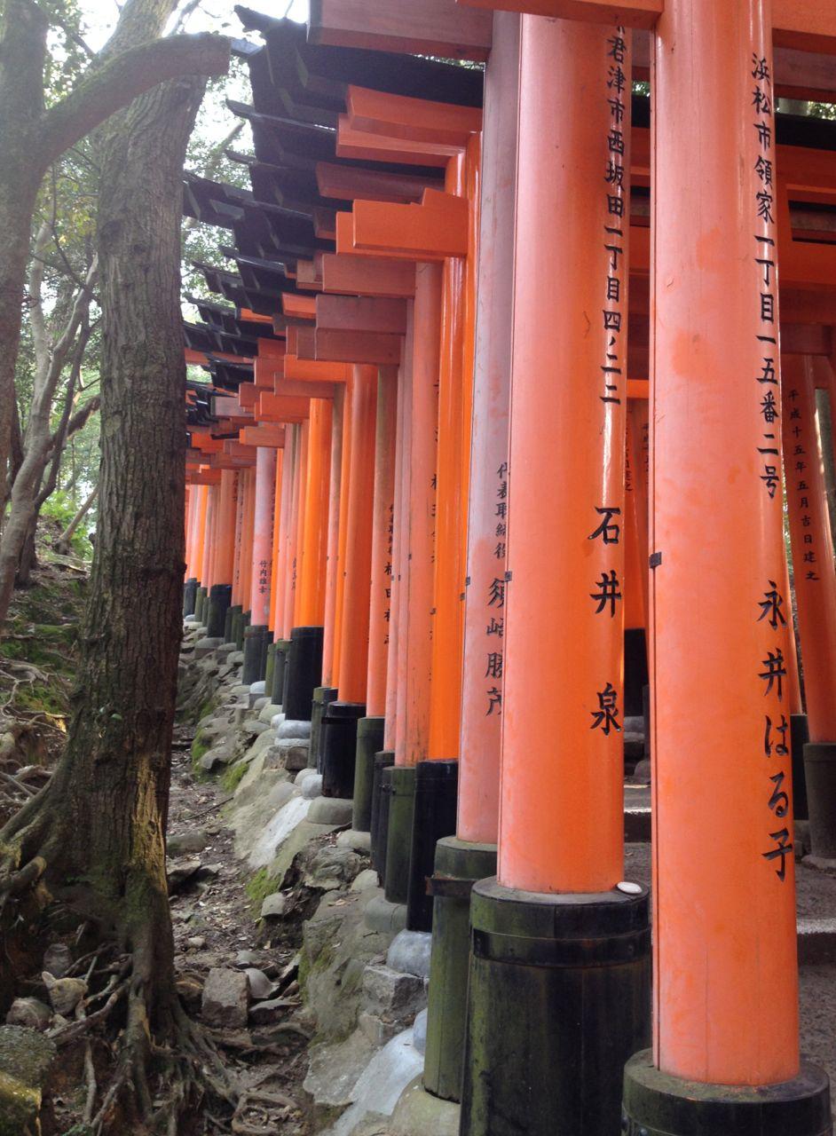fushimi inari-taisha . kyoto . japan 24.03.14