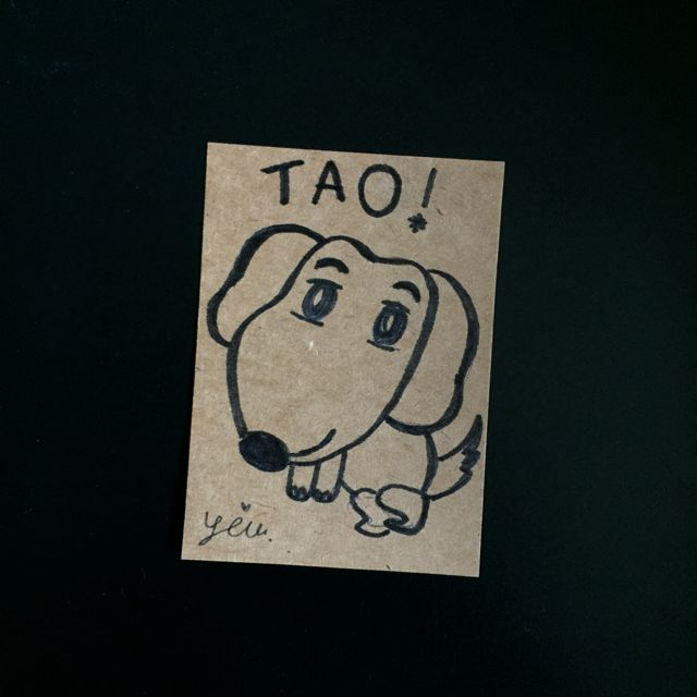 tao, Yim 17.10.14    This is my first dog Tao. I had another dog too but he died. Tao is now ten years old.    #19