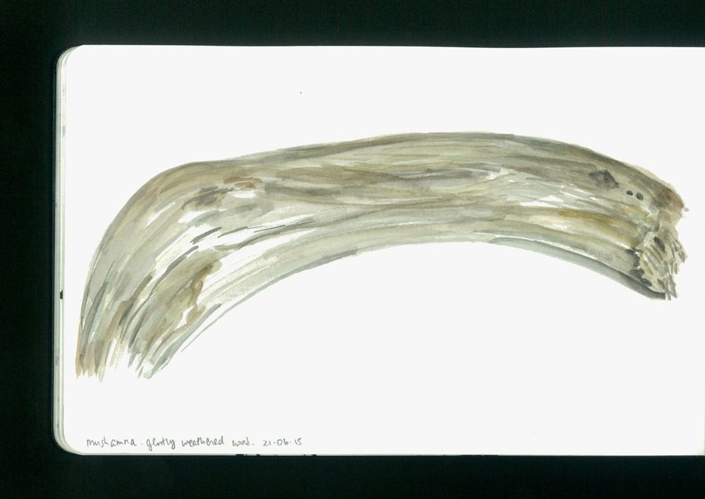 arctic sketchbook - 14.jpg