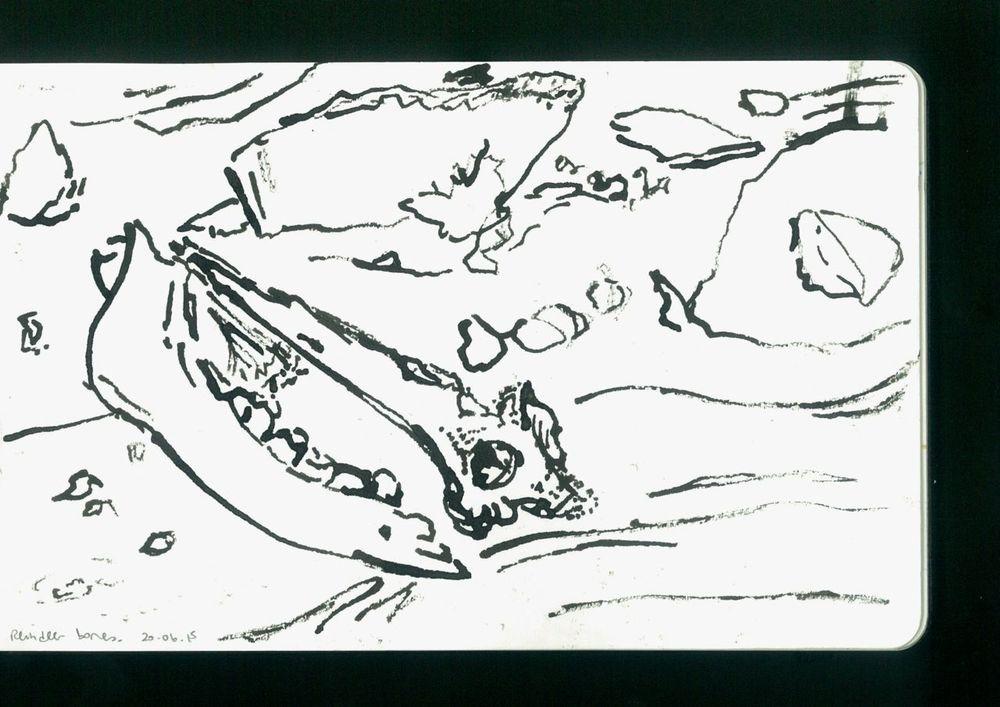 arctic sketchbook - 12.jpg
