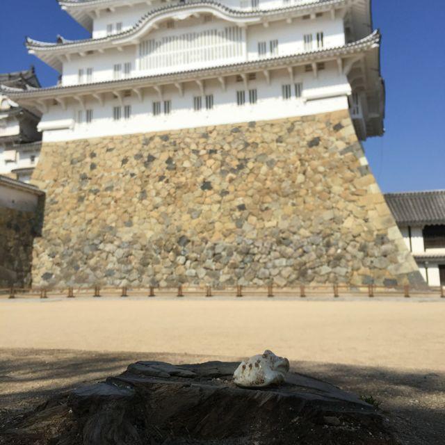 himeji castle . himeji . japan 09.02.16