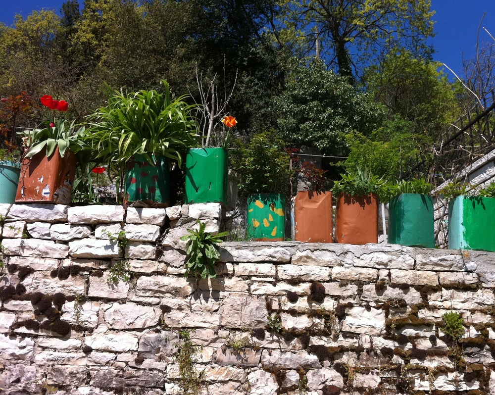 Flowers planted in feta pots, Ano Pedina