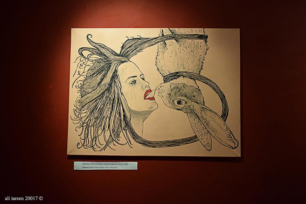 photo of exhibiton ali- tareen.4.jpg