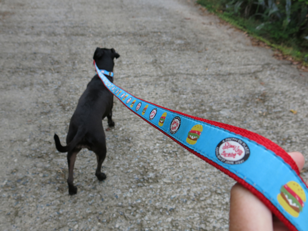 skinny leash 3.jpg