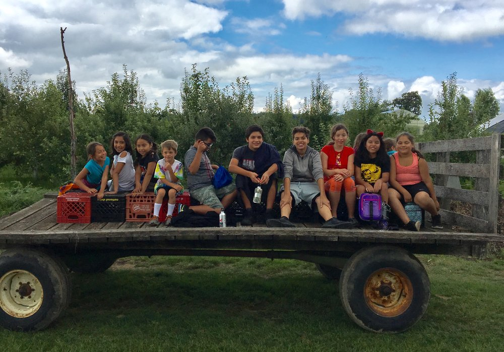 kids camp farm.jpg