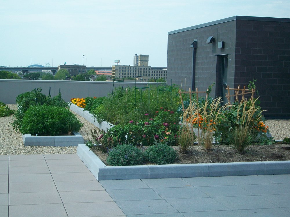 Rooftop Garden at CORE El Centro