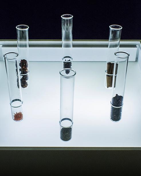 weetest-tubes.jpg