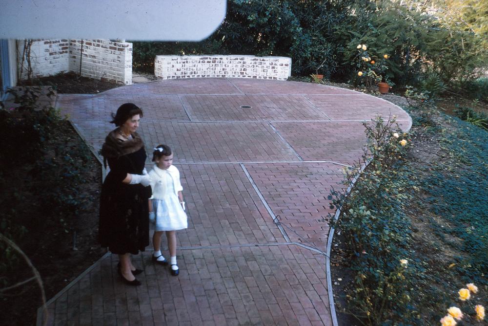 the 1960s garden