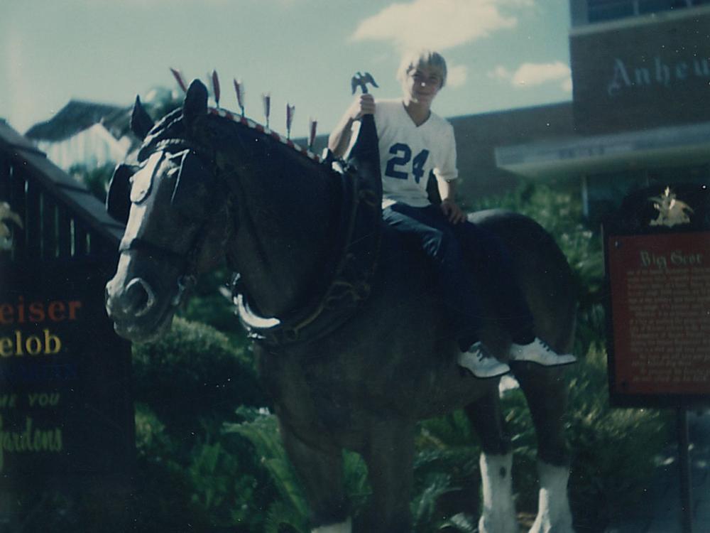 buschhorse.jpg