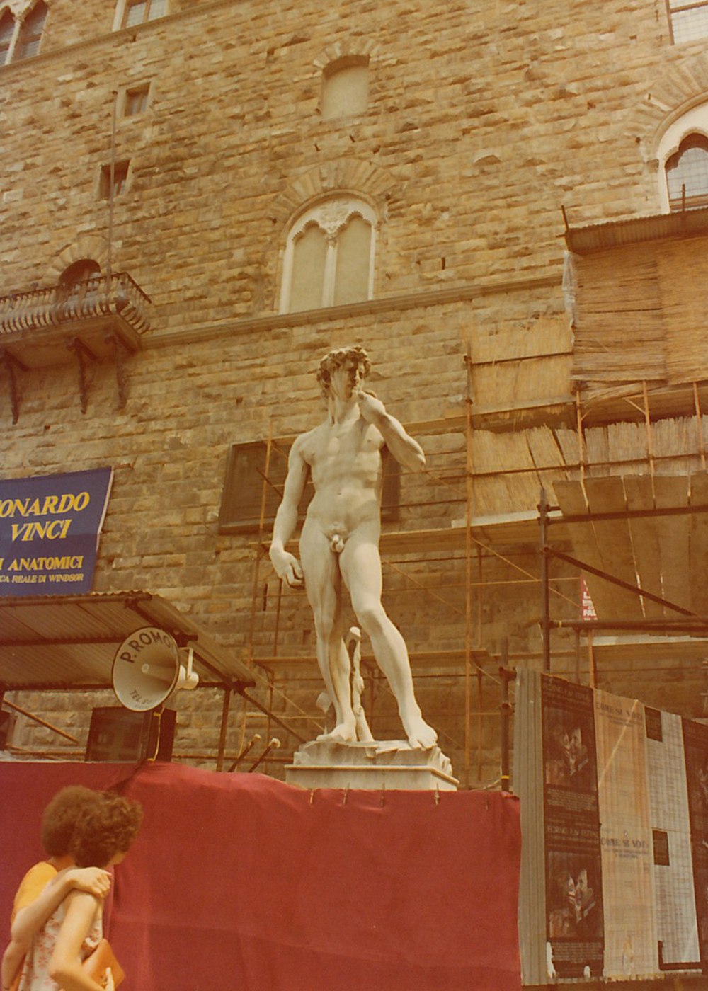 Michelangelo's David in Florence, Italy.