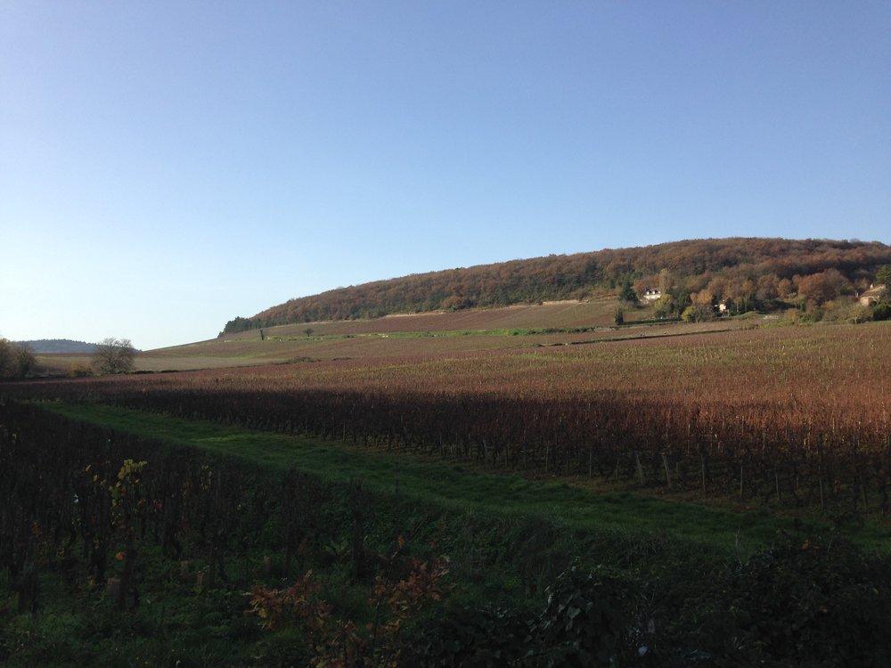 Novembre 2015 – Voyage en Bourgogne chez nos amis..