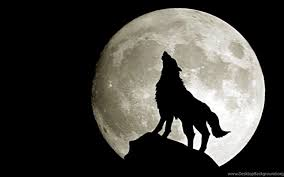 come howl at the moon