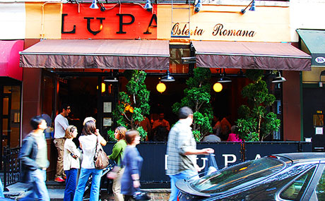 Lupa Osteria Romana - 170 Thompson St New York, NY 10012. Italian.