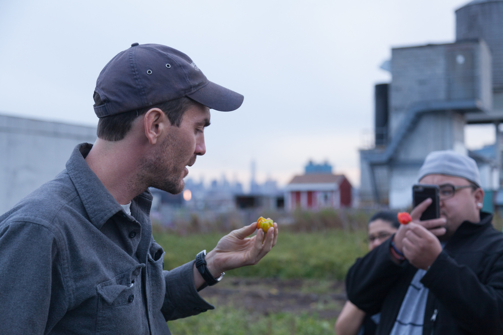 Farmer Ben Flanner of The Brooklyn Grange Farm @BrooklynGrange shares his pepper wisdom as Foodstander Flo @servemenow takes a photo of his pepper.