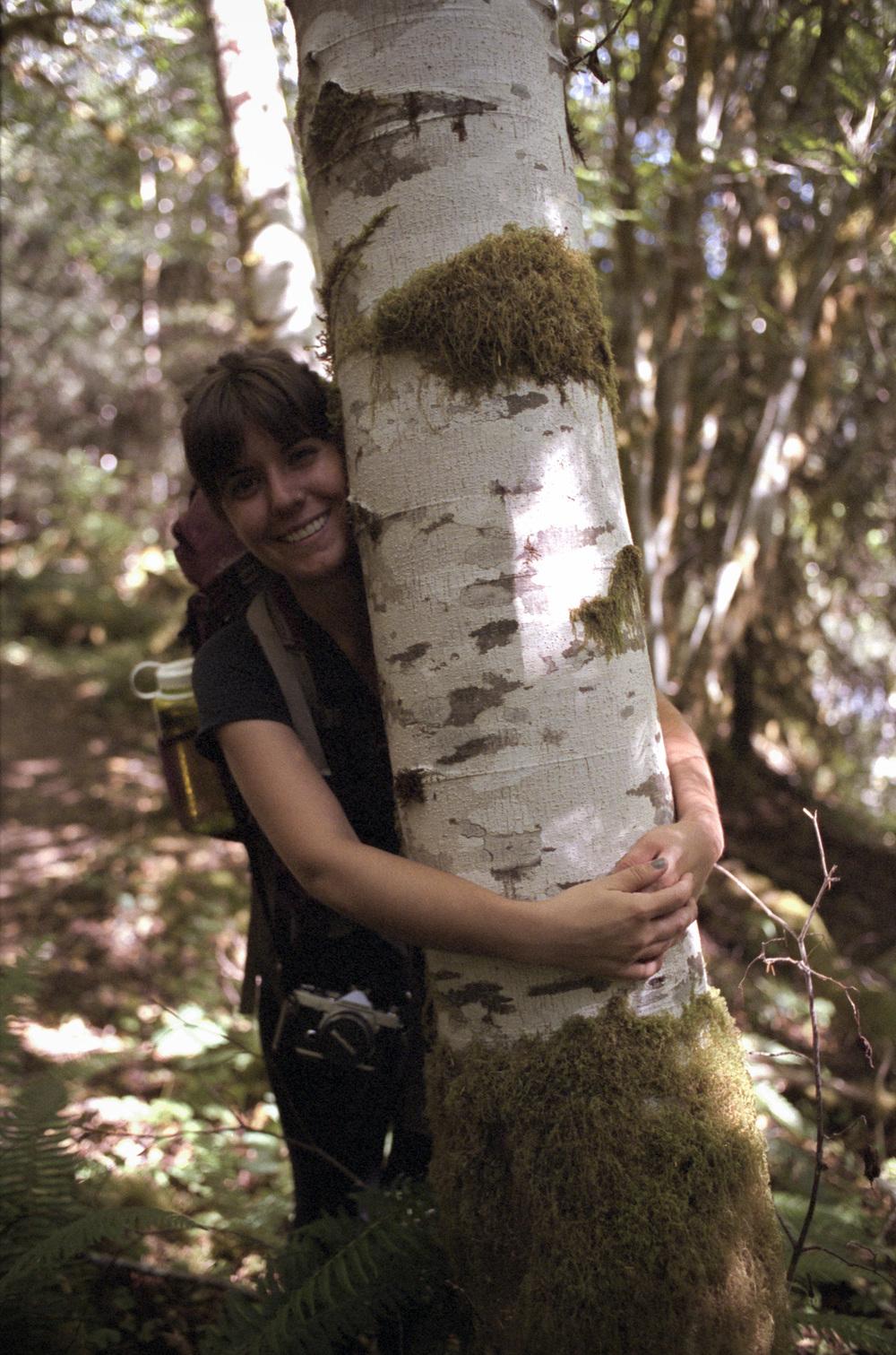 Birch Hug