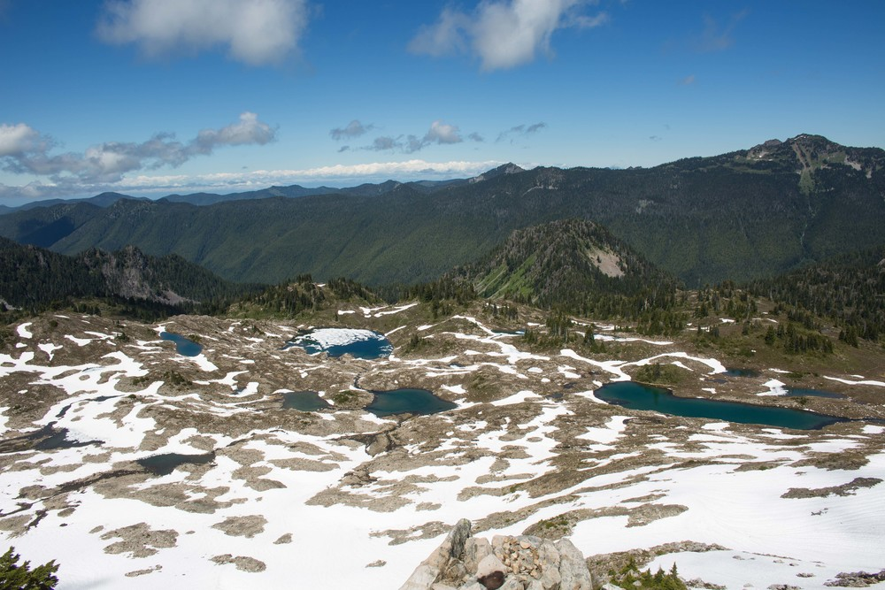 Seven Lakes basin from Bogachiel Peak