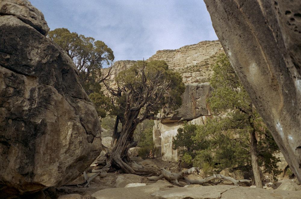 From the base of the Resident Evil Boulder, Joe's Valley Utah