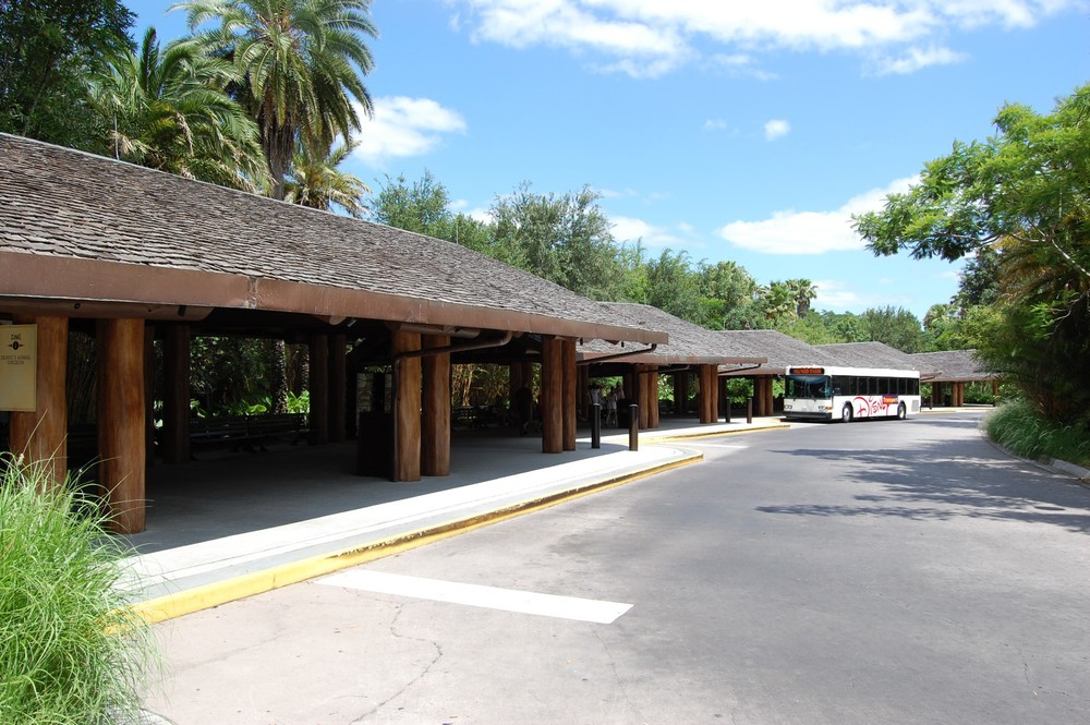 Buses pick up passengers at both the Kidani village and Jambo House areas of Disney's Animal Kingdom Lodge.
