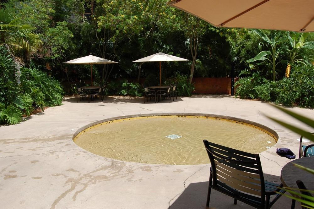 Disney's Animal Kingdom Lodge Uzima Pool Wading Pool