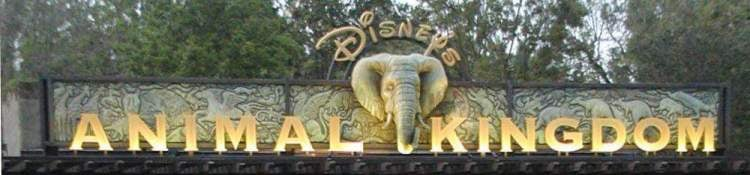 Where to meet Disney Princesses at Disney's Animal Kingdom park / Walt Disney World Resort - Florida.