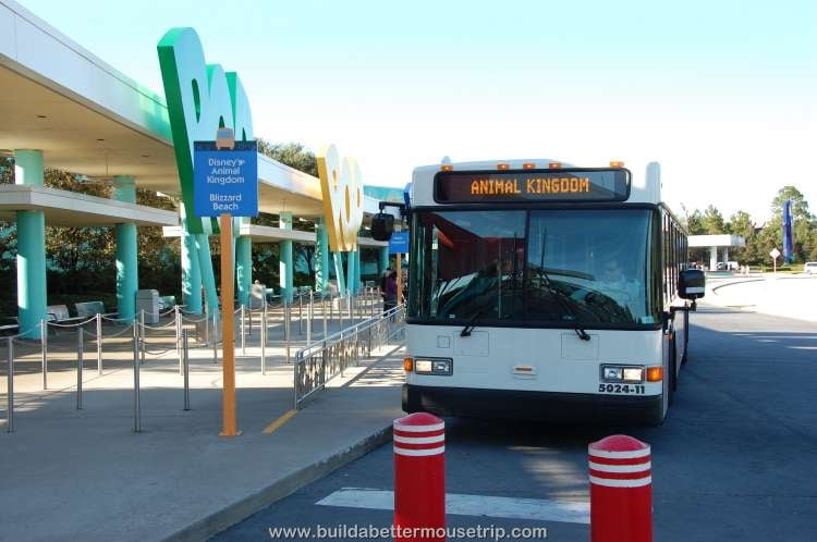 You to catch a bus to the Disney World theme parks from Disney's Pop Century Resort
