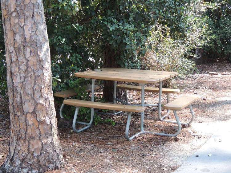 Disney's Ft. Wilderness campground picnic tables