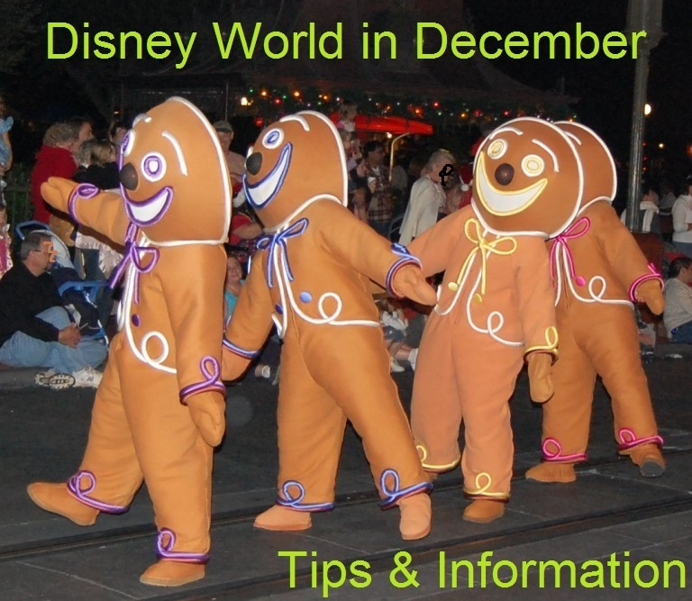 Tips & Information for your December Holiday Trip to Disney World - Christmas events, crowd tips, and more.