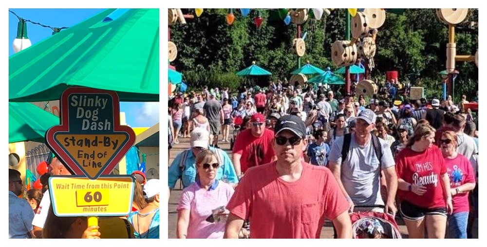 Tips for avoiding long lines for Slinky Dog Dash in Toy Story Land at Disney's Hollywood Studios / Disney World.