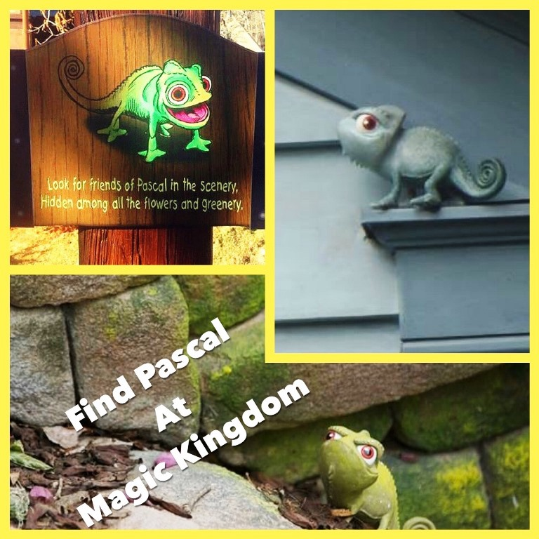 Find Pascal, the chameleon from Disney's Tangled, in the Magic Kingdom park at Walt Disney World Resort in Florida.