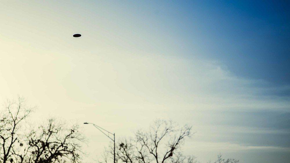 Frisbee-88.jpg
