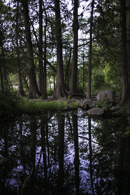 Krause Springs-2.jpg